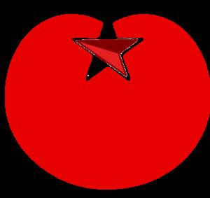 SP_nl_logo_kompas3